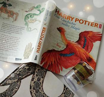 """[Rezension] """"Harry Potter- Eine Geschichte voller Magie"""""""